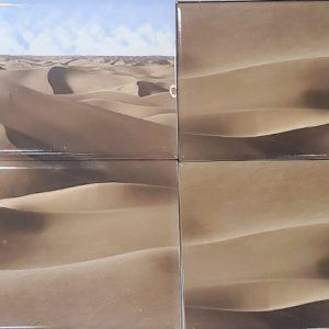 Decor desert
